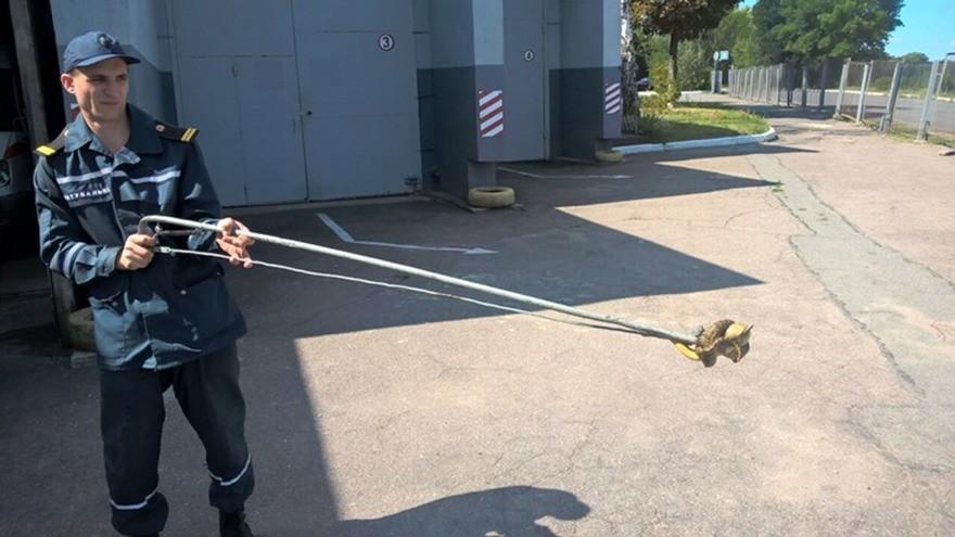 Нашествие змей в Днепре: спасатели поймали посреди города двухметровую змею (фото)